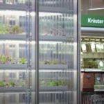 Innovatieve kweekkasten in de supermarkt – inStore farming